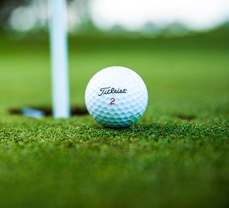 Waratah Golf Club website_About